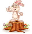 Cartoon bunny giving thumb up on tree stump vector image vector image