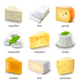 cheese types icons set vector image vector image
