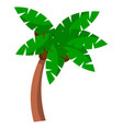 coconut palm tree on a white background bent palm vector image vector image