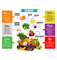color diet vegetables and fruits information vector image
