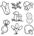 doodle of vegetable various hand draw vector image vector image