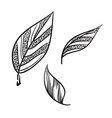Tea leaves hand drawn Tea leaves icon vector image vector image