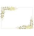 watercolor botanical rectangle frame vector image vector image