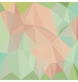abstract colorful white background with triangles vector image
