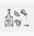 bottle tequila salt and shot with lime vector image vector image