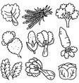 doodle of vegetable hand draw vector image vector image