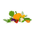 fresh organic vegetables in big heap isolated vector image