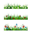 green grass seamless set vector image
