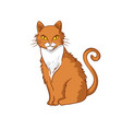 hand-drawn red cat isolated on white background vector image vector image