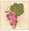 Retro-styled grape bunch vector image vector image