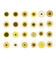set sunflower flowers collection cartoon vector image vector image