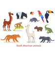 south american animals cartoon set vector image