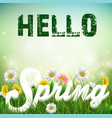 spring background with word spring in the grass vector image vector image