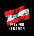 stylized lebanon flag with inscription pray vector image