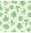 succulent garden seamless pattern vector image
