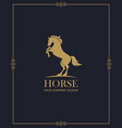 emblem of horse vector image vector image