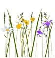 flowers in meadow vector image vector image