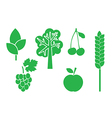 green elements of nature - set vector image