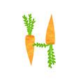 h veggie vegetable english alphabet letter made vector image vector image