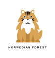 norwegian forest cat fluffy domestic animal with vector image vector image