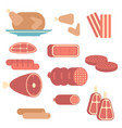set meat products set meat products vector image