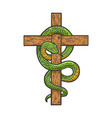 snake on cross sketch vector image vector image