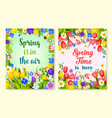spring flower card with floral frame and border vector image vector image