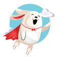 superhero easter bunny flying in clouds web on vector image