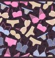 underwear bra and underpants pattern vector image