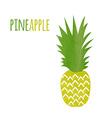 Watercolor Pineapple vector image