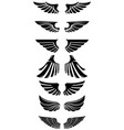 set wings icons design elements for logo label vector image vector image