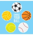 Sport balls set on blue vector image