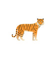 tiger in flat design wild animal vector image