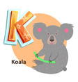 cartoon koala with branch for k alphabet letter vector image