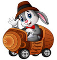 cartoon rabbit driving a toy car vector image