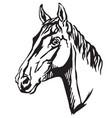 decorative portrait of trakehner horse-3 vector image vector image