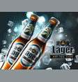 design of advertising beer with two bottles in vector image