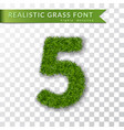 grass number five green number five isolated on vector image vector image