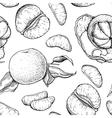 hand drawn mandarin seamless pattern vector image