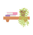 shelf with books and potted plant isolated design vector image