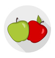 Apples Drawings vector image