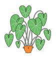 cartoon alocasia character in a cute pot vector image vector image