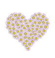 chamomiles in the shape of a heart vector image