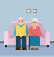 cute grandparents couple cartoon vector image vector image