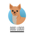 dog logo in flat style design vector image