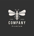 firefly hipster vintage logo icon vector image vector image