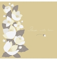 Greeting card with jasmine flowers vector image vector image