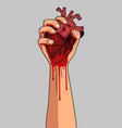 human heart in hand isolated vector image vector image