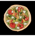 Pizza sketch for your design vector image