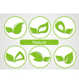 Set of green leafs images vector image vector image